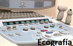 ecografia animales mostoles